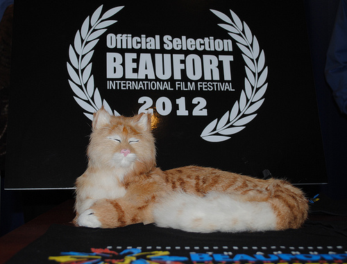 Stuffy the Stand-in at the Beaufort International Film Festival