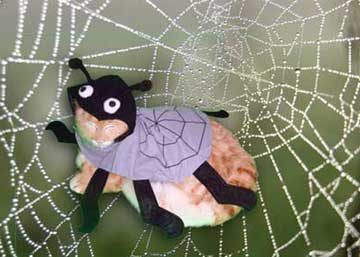 Spider Stuffy